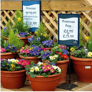 Garden Retail Display