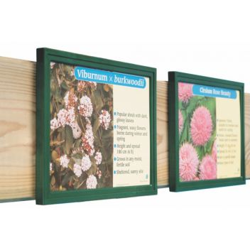 "A5 Plastic Slim frames for 8x6"" bed cards"